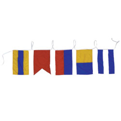 Decorative Strand of Code Flag