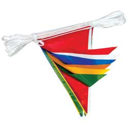Decorative Pennant String, 50'