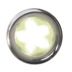 "Stainless Steel Surface-Mount 4"" LED Light, White"