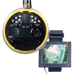 AquaLens Underwater Color Video Camera with 25' Cable