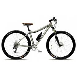Titanio 29er Electric Bike 10 Speed, 33V, 200W