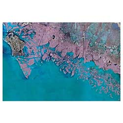 Marco Island/Everglades City, Florida Laminated Map