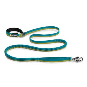 Roamer Dog Leash, Blue