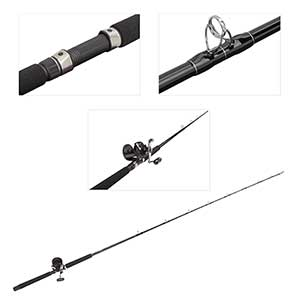 Conventional Rod and TLD15/30S Reel Combo, 7'