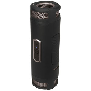 boomBOTTLE + Black/Gray