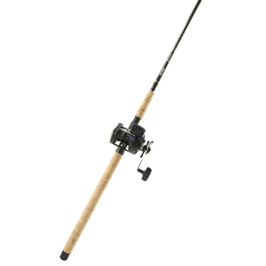 Celilo Casting Rod with a Magda Reel