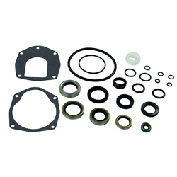 18-2646-1 Lower Unit Seal Kit