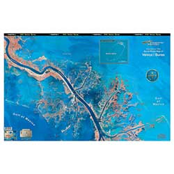 Venice/Buras, Louisiana Laminated Map