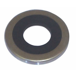 Oil Seal - Used with 18-2100,2