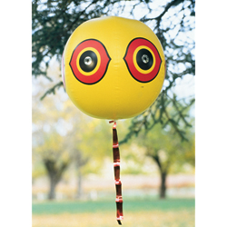 Bird Deterring Balloon