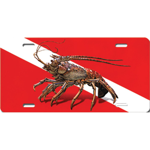 Marine Sports Lobster Dive License Plate Sale $15.99 SKU: 11828381 ID# 4906-53 UPC# 806723906533 :