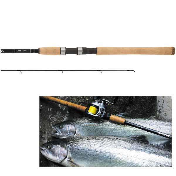 Daiwa DXS Salmon & Steelhead Spinning Rod, Medium Power, 8-17lb. Line Class, 8'6