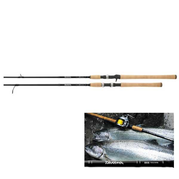 Daiwa Salmon & Steelhead Spinning Rod, Medium Power, 8-17lb. Line Class, 9'
