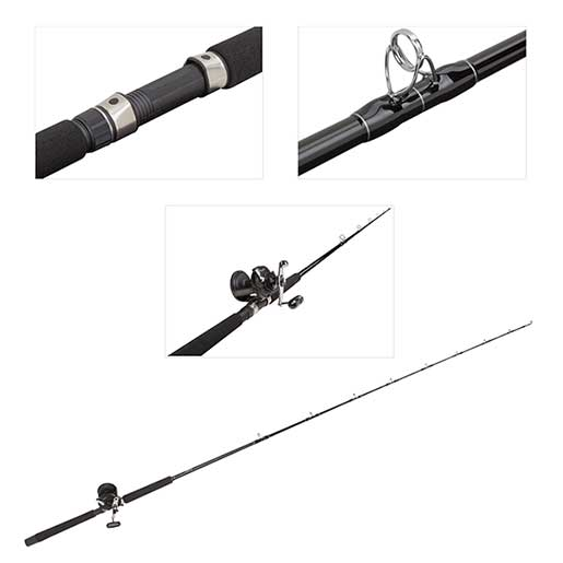 Blacktip Conventional Rod and TLD15/30S Reel Combo, 7'