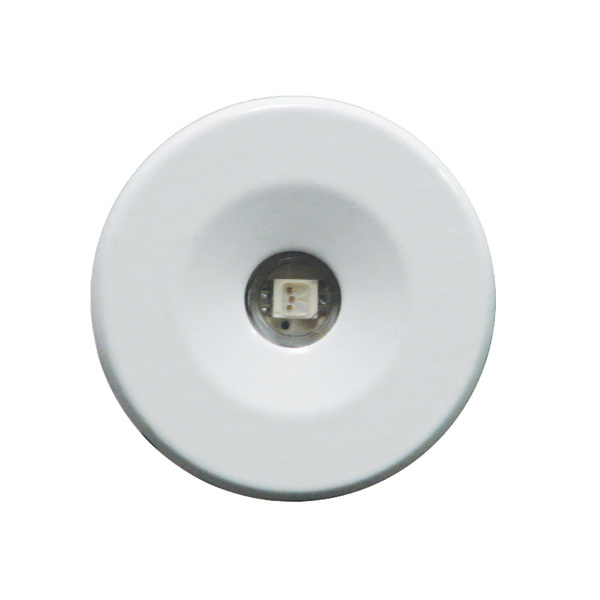 Lumitec Lighting Echo Recessed LED Courtesy Light, Blue, 24V