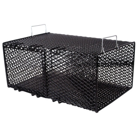 Frabill 1264 Pinfish Trap, Black Sale $48.99 SKU: 2967370 ID# 1264 UPC# 82271112644 :
