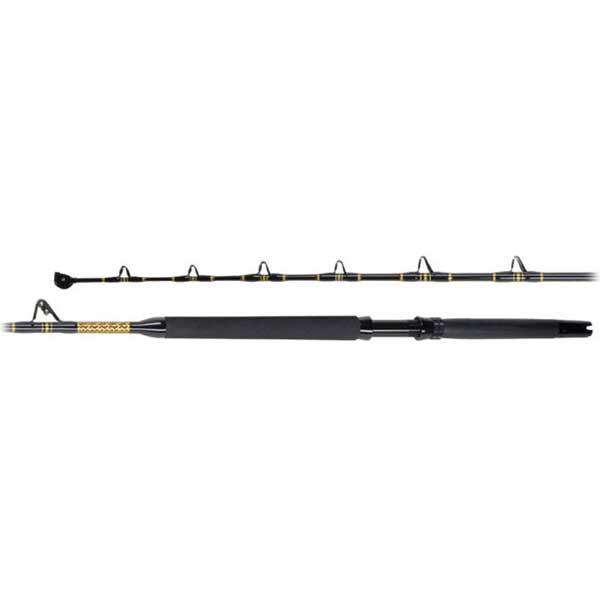 PENN International V Stand-up Rod, RS/RF, 6', 30-80lb.