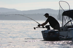 Selecting a fishfinder west marine for West marine fish finders