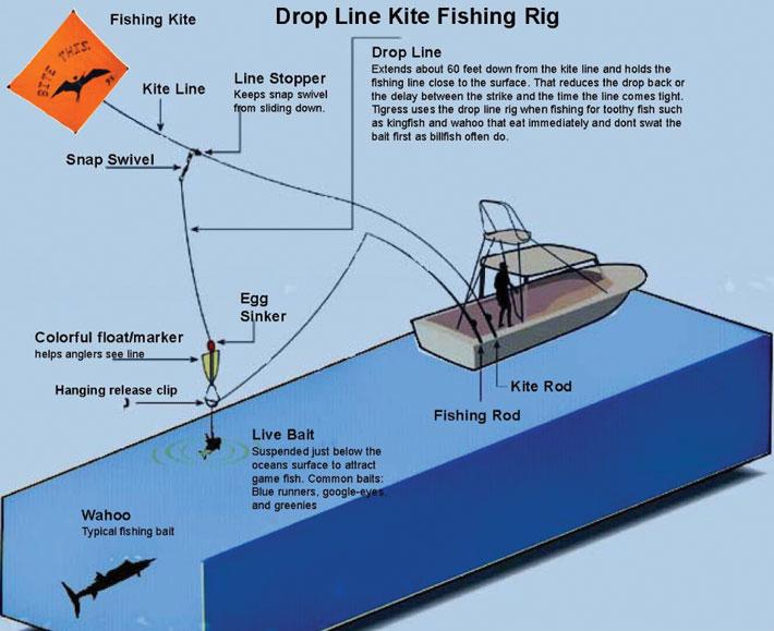 New 3-Fishing Rod Holder Cluster, Kite Fishing, for Boat ... |Fish Kites Pole