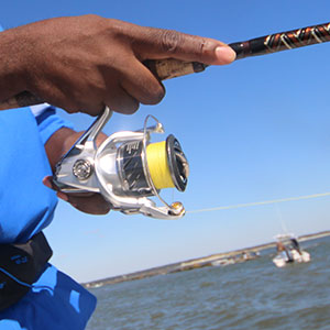 Selecting a Fishing Reel