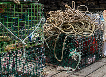 North East & New England Crabbing