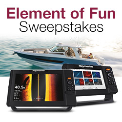 Element of Fun Sweepstakes