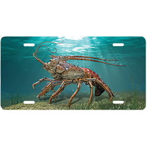 Lobster License Plate
