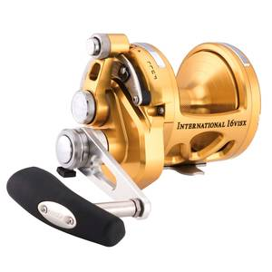 International® 16VISX 2-Speed Conventional Reel, Gold