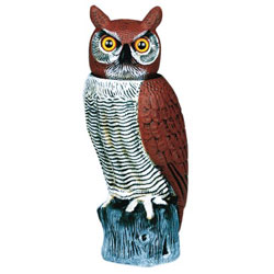 Rotating-Head Owl Decoy