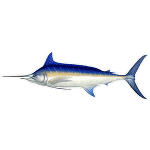 Marlin Profile Fish Decal