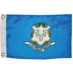 "Connecticut State Flag, 12"" x 18"""