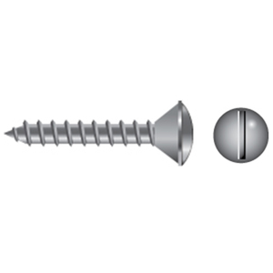 Stainless Steel Slotted Oval-Head Tapping Screws