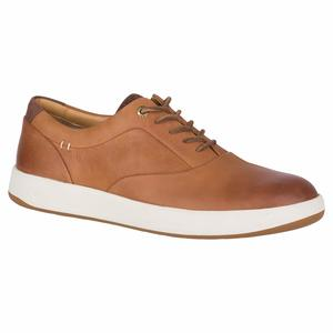 Men's Gold Richfield CVO Sneakers