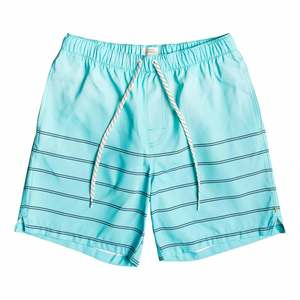 Men's Sundown Swim Trunks