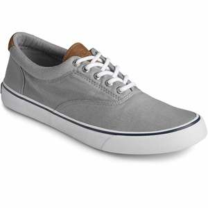 Men's Striper II CVO Shoes