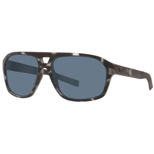 Switchfoot  580P Polarized Sunglasses