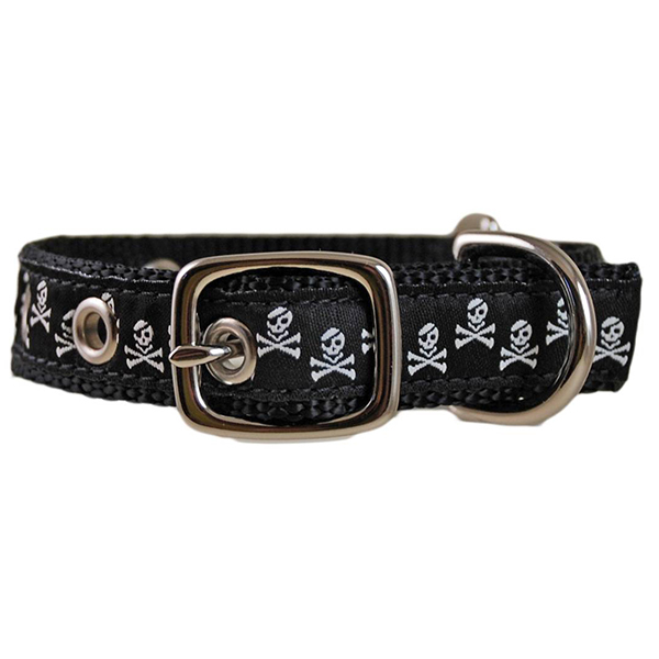 Pirate Dog Collar
