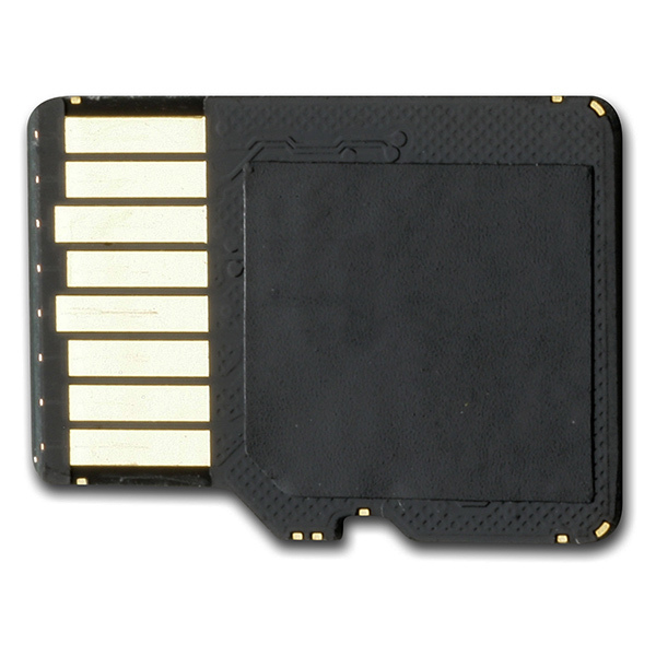 4GB microSD with SD Adapter
