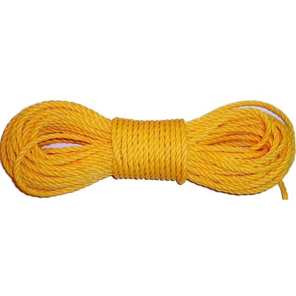 "100' 1/4"" Twisted Poly Rope"