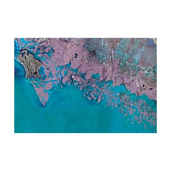 Standard Mapping Service Marco Island Everglades City Florida