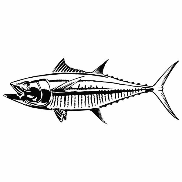 Die Cut Tuna Decal