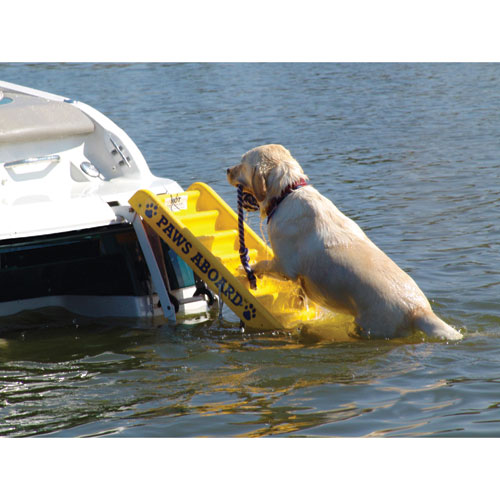 Paws Aboard Doggy Boat Ladder West Marine