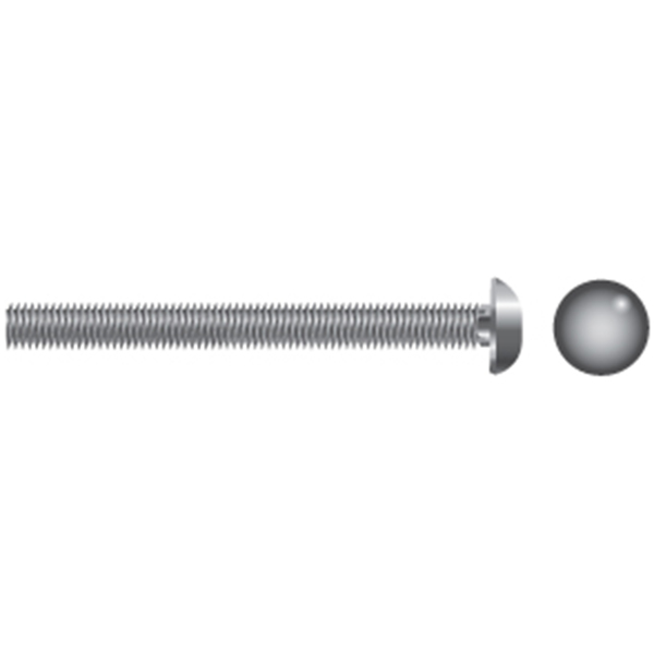 Stainless Steel Carriage Bolts