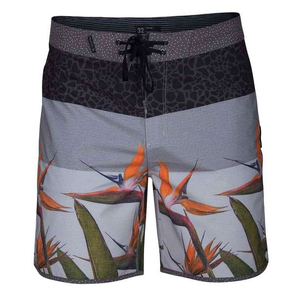 Men's Phantom Bird Board Shorts