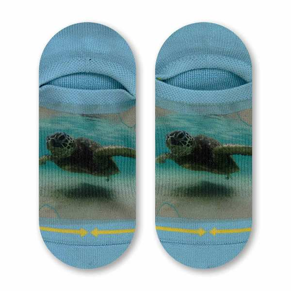 Dave Nelson Turtle No Show Socks