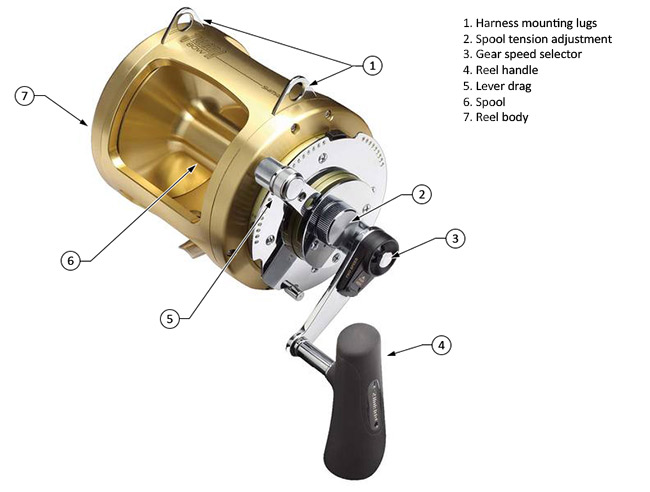 Parts of a conventional reel diagram