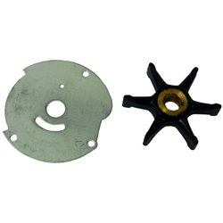 Sierra 18 3203 Impeller Repair Kit For Johnson/evinrude Outboard Motors, Cooling Systems for Boats & Yachts