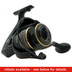 Penn Battle Spinning Reels 3000 Reel 6 1bearing 10 Lbs Drag 6 2 1gr 31''line Retrieve 11 6oz, Spinning Fishing Reels for Boats & Yachts