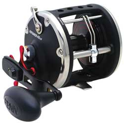 Penn Defiance Level Wind Reels Dfn25lw 300/25lb 4 3 1 18 8oz, Conventional Fishing Reels for Boats & Yachts