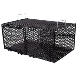Frabill 1264 Pinfish Trap Black, Crab & Lobster Traps for Boats & Yachts